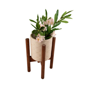 Indoor Ceramic and Wooden Planters