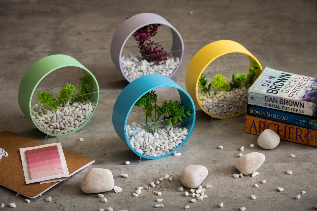 A Tiny Mistake Pastel Circular Assorted Colours Planter, Indoor Planter for Home Decor, Perfect for Work from Home Desk