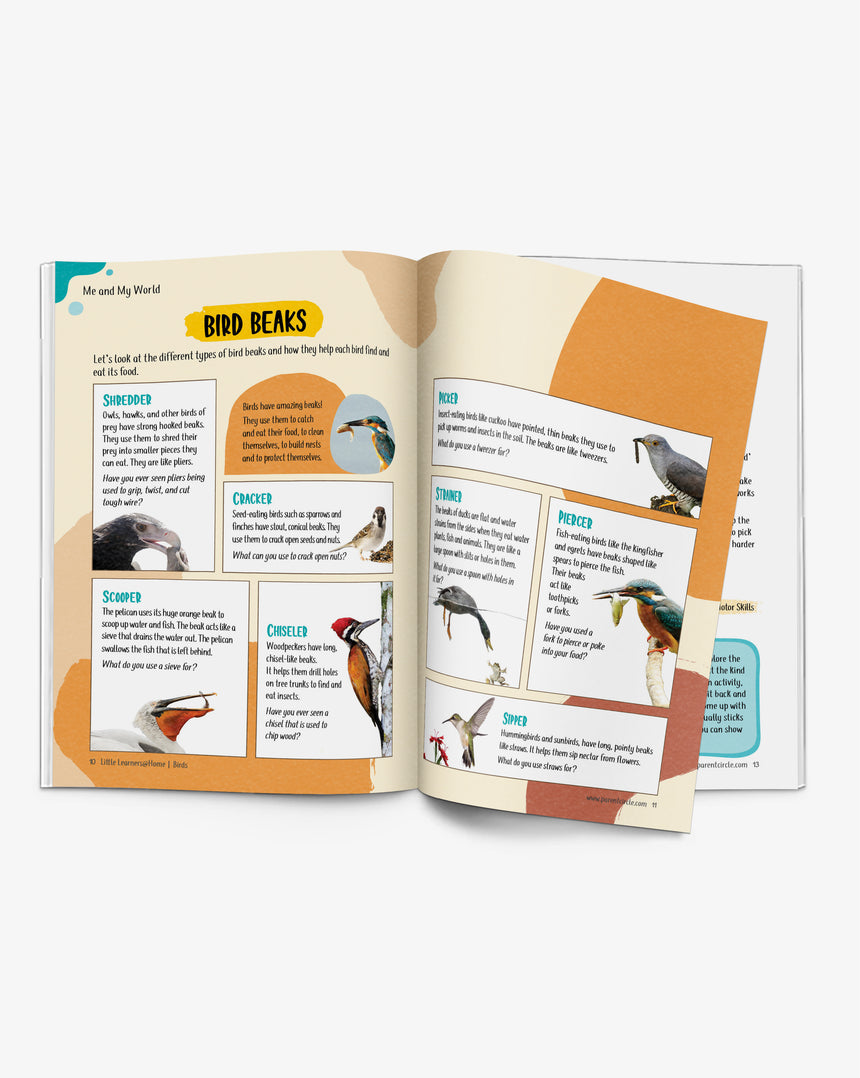 Birds Activity Book for 3-5 year olds