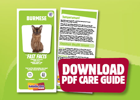Download Burmese PDF care guide