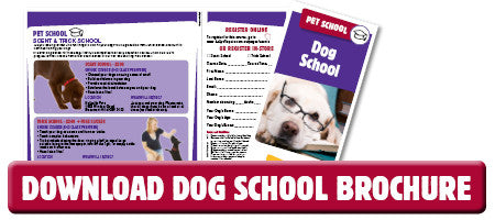 Download the Kellyville Pets Dog School brochure