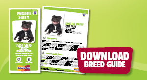 Download English Staffy breed guide
