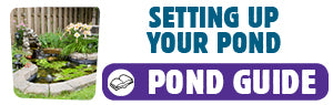 Download Setting Up Your Pond Guide