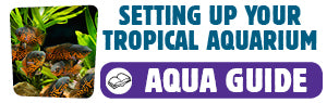 Download Setting Up Your Tropical Aquarium Guide