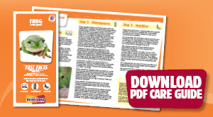 Download the frog PDF care guide here