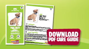 Download Jug PDF care guide