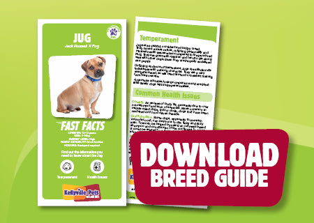Download Jug breed guide
