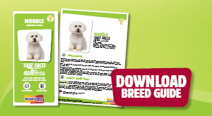 Download Moodle breed guide