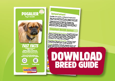 Download Pugalier breed guide