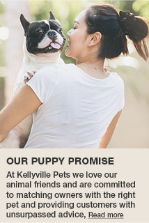 Our Puppy Promise