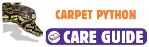 Click here to view Carpet Python care guide
