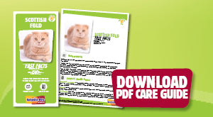 Download Scottish Fold PDF care guide