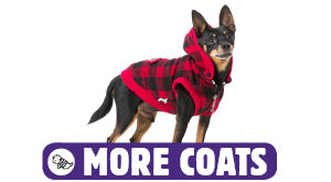 Click here for more dog coats