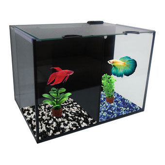 Betta Villa Duo