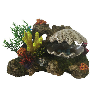 Action Clam with Coral and Plants Medium
