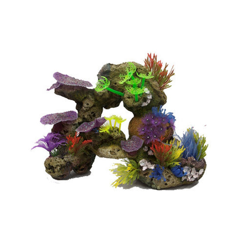 Soft Coral With Rock & Plants
