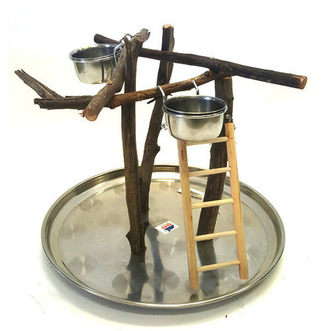 Natural Bird Stand With Stainless Steel Base