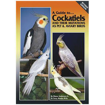 A Guide to Cockatiels