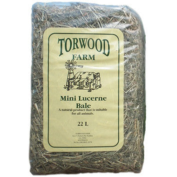 Torwood Farm Mini Lucerne Bale