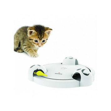 POUNCE Interactive Toy