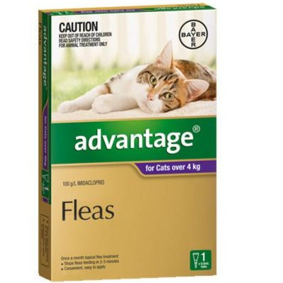 Advantage Cat Over 4kg