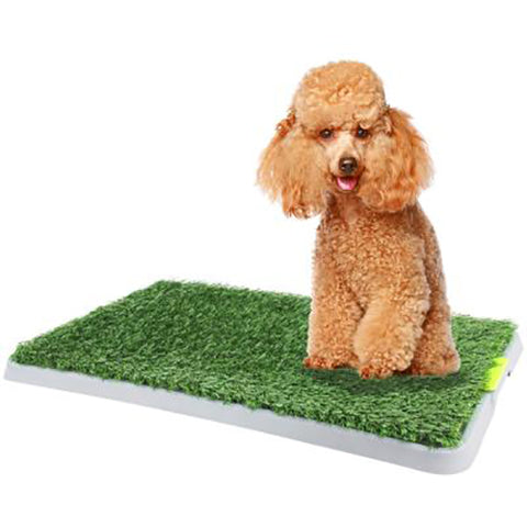 Green Dog Toilet Trainer 68x42cm