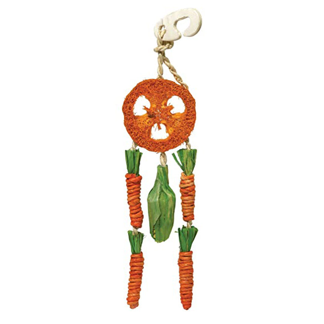 Carrot Dream Catcher Toy