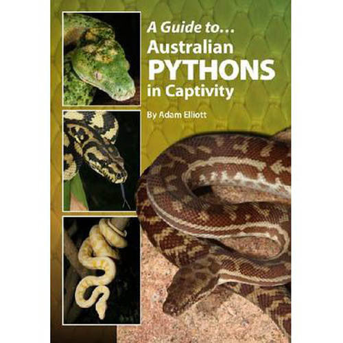 A Guide To Australian Pythons