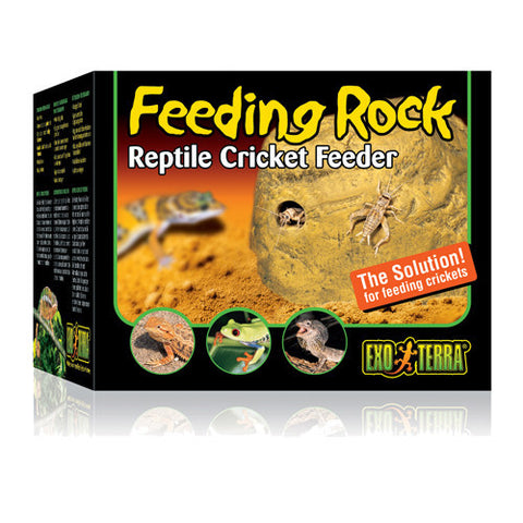Exo Terra Reptile Cricket Feeding Rock