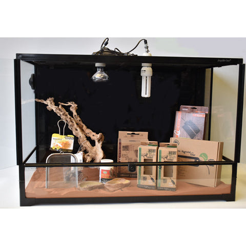 Bearded Dragon Lifetime Kit