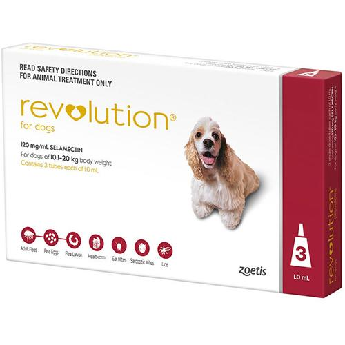 Revolution For Dogs