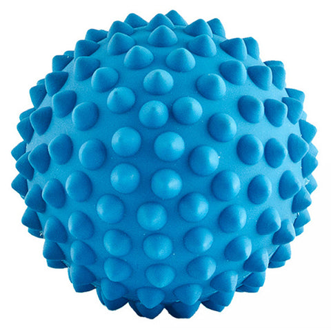 Long Ball Soft Blue Dog Toy