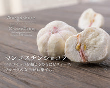 Load image into Gallery viewer, Mangosteen chocolate (large grain type, 4 grains) 20g