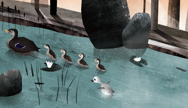 Posters from Hans Christian's fairy tale, The Ugly Duckling in six different illustrations - Aviendo Copenhagen