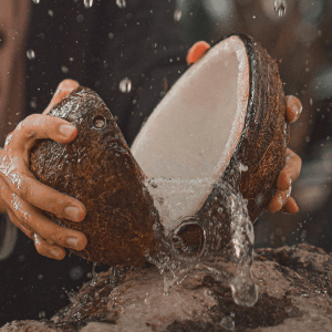 Coconut Water (Freeze Dried)