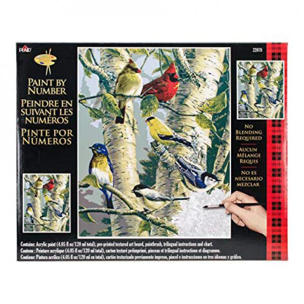Plaid Paint By Numbers - Song Bird Favourites
