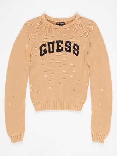 Guess Spell out Crew Neck Knit Brown / Black Size Medium