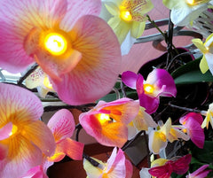 Lighting Branches & Orchids