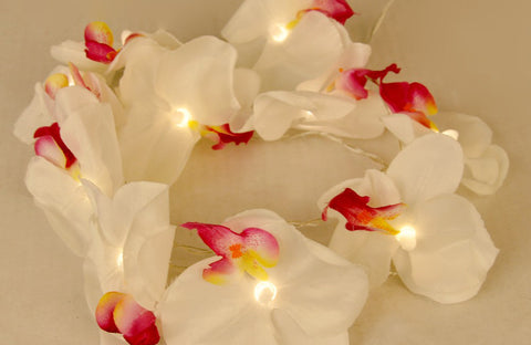 Orchid Decor LED Light Strings