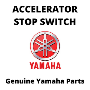 Accelerator Stop Switch