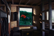 Load image into Gallery viewer, Horse with Red Hood, 1995