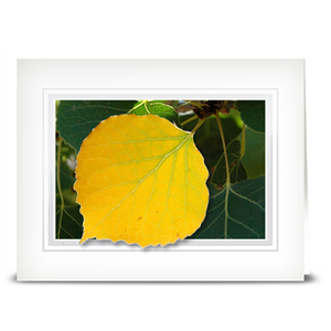 Aspen Leaf - folded card