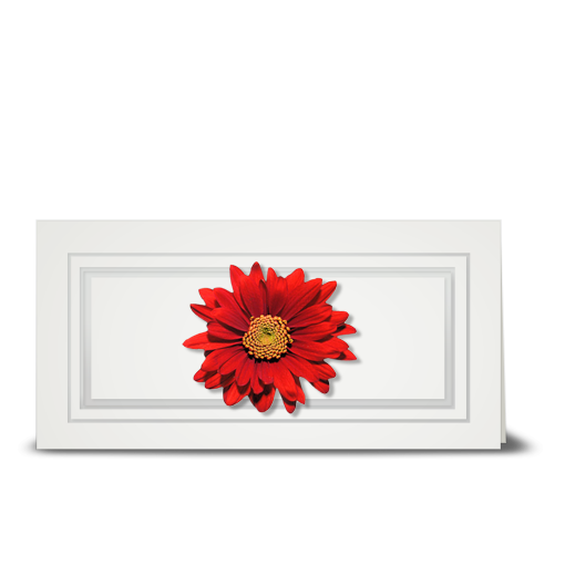 Daisy, red - gift tag