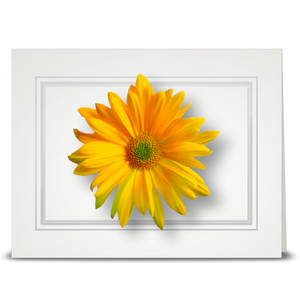 Daisy, yellow - folded card