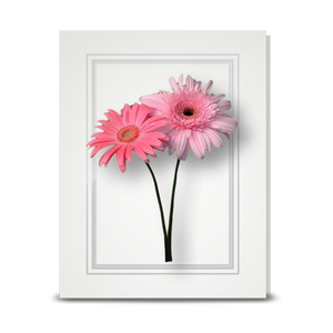 Gerbera, Double Pink - folded card