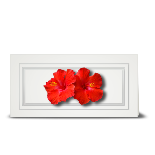 Hibiscus, double red - gift tag