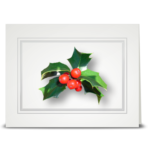 Holly, Glossy - folded card