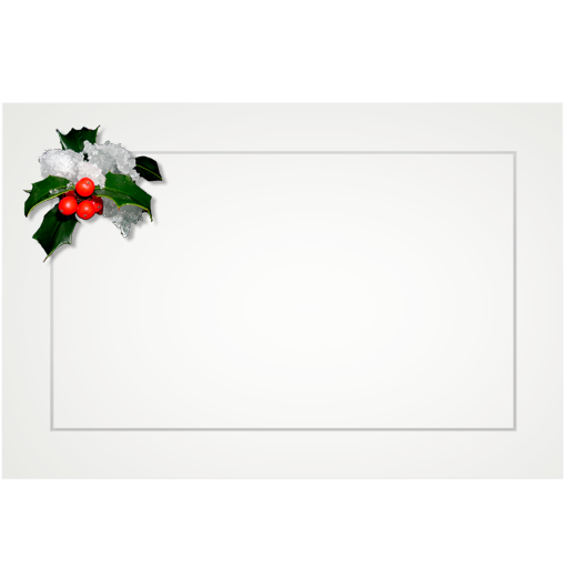 Holly, snowy - flat cards (box of 10)
