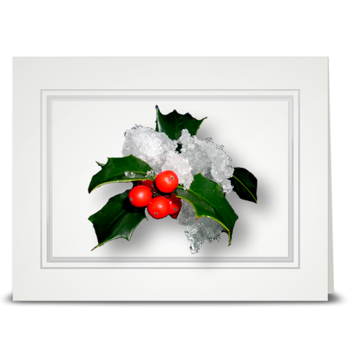 Holly, Snowy - folded card