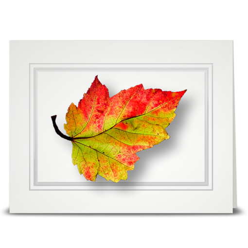 Bright Fall Leaf - folded card
